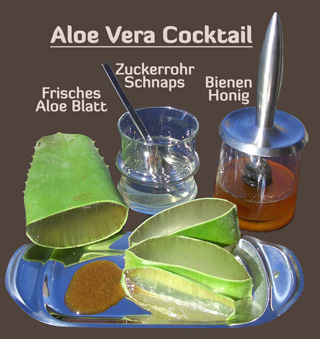 aloe vera zentrum verwendung aloe vera infos. Black Bedroom Furniture Sets. Home Design Ideas